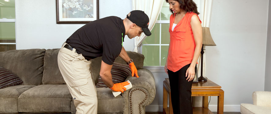 Ottumwa, IA carpet upholstery cleaning